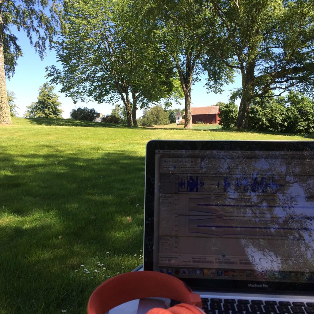Redigering av Sommarforskarna - det bästa sommarjobbet någonsin? Foto: Natalie von der Lehr