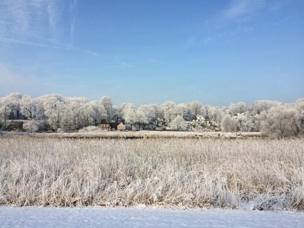 Ljusterapi - snö, sol och redigering av årets Vinterforskare Bild: Natalie von der Lehr